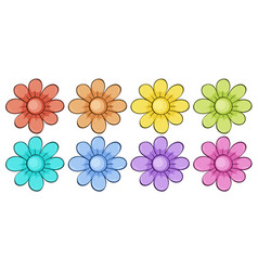 isolated set flowers in many colors vector image