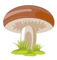 Mushroom in herb vector image