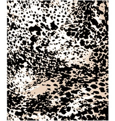 fashion leopard pattern vector image vector image