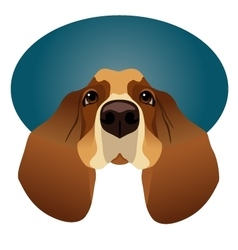 Basset Hound isolated on circle blue frame vector image vector image
