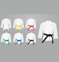 Colored belts with kimono vector