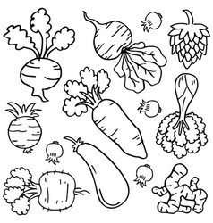 Doodle of vegetable collectio vector