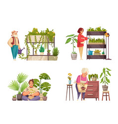 home plants 2x2 compositions vector image