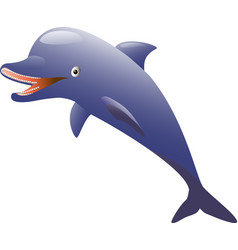 isolated dolphin on white background vector image