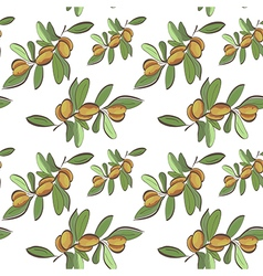 Seamless flat argan fruits pattern vector