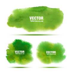 set of bright green watercolor stains vector image