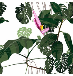tropical green monstera and palm and bananas leave vector image