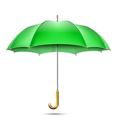 Realistic Detailed Green Umbrella vector image vector image