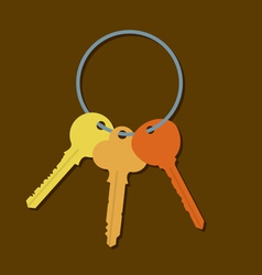 Keys In A Bunch vector image vector image