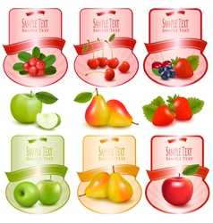Set of labels with berries and fruit vector image