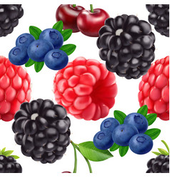 blackberry blueberry cherry and raspberry seamless vector image