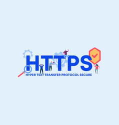 Https hyper text transfer protocol secure coding vector