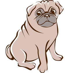 Pug outline drawing vector