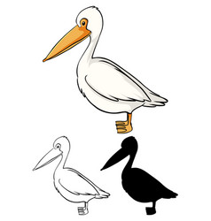 Set pelican cartoon vector