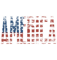 graphic image of the word america with usa flag vector image