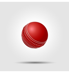 Cricket ball on white background with shadow vector