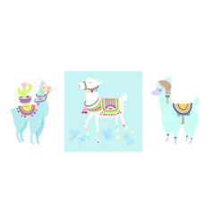 funny llama with cactus isolated on white blue vector image