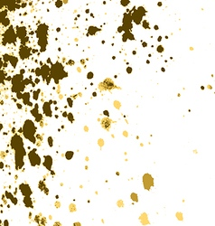 gold paint splash splatter and blob on white vector image