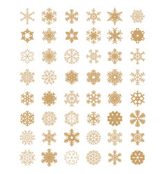 set of different golden snowflakes vector image