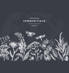 summer wild flowers design on chalkboard floral vector image