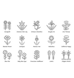 Wild flowers linear icons set spring blossom vector