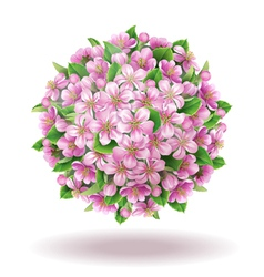 Blooming ball vector image vector image