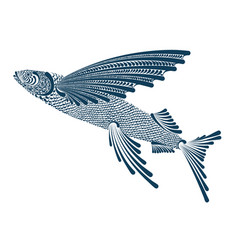 A flying fish vector