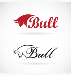 bull head design and letters on white vector image