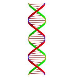 Dna twin spiral vector