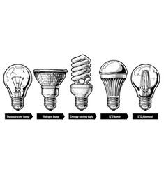 Evolution set of light bulb vector