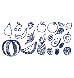 Lot black hand drawn fruits vector