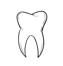 Sketch of the tooth vector