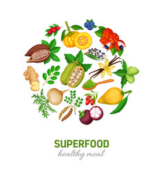 Superfood icons set vector