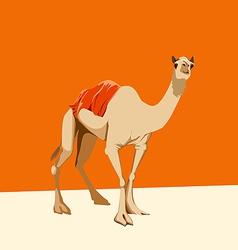 camel on an orange background vector image vector image