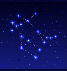The constellation gemini vector