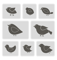 monochrome icons with different birds vector image vector image