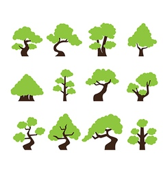 tree icon vector image