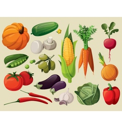 A set of delicious vegetables vector image
