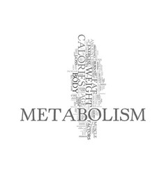 Your metabolism and its effect on fat loss text vector