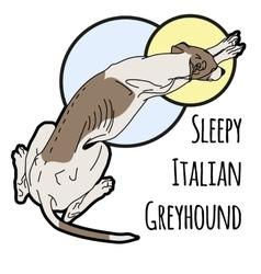 A sleeping Italian vector