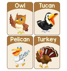 Educational english word card birds set vector