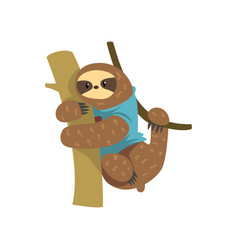Funny sloth in blue t shirt hanging on the tree vector