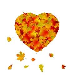 Heart shape made from autumn leaf EPS 8 vector
