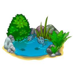 Pond with predatory piranhas plants and stones vector