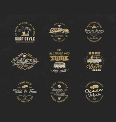 vintage surfing graphics and emblems set for web vector image