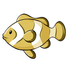 Yellow clownfish on white background vector
