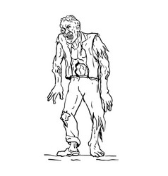 Zombie walking front drawing vector