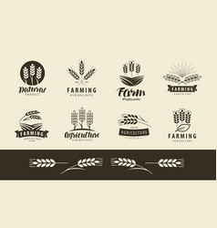 Agriculture wheat logo or label farm farming vector