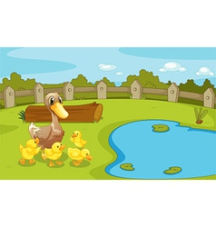 Ducks near the small pond vector