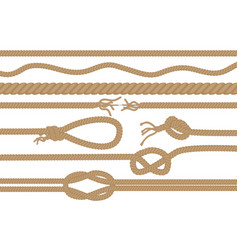 Rope brushes with different knots set vector